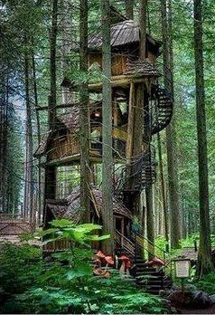 Tree house on Tonica